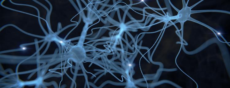 DIAGNOSTYKA NEUROLOGICZNA W FIZJOTERAPII I OSTEOPATII